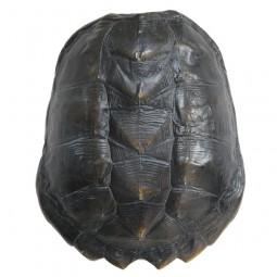 Sztuczna skorupa żółwia czarna - HK Living