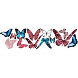 Khroma Kidzzz Butterfly naklejka