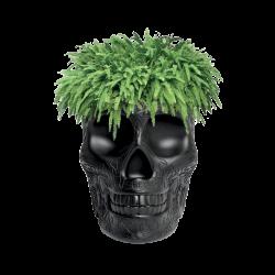 Mexico Planter czarny